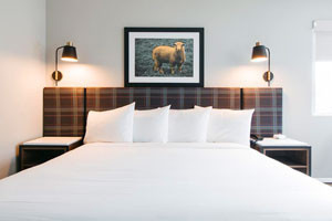 Hotel Ketchum | for Families w/Pets