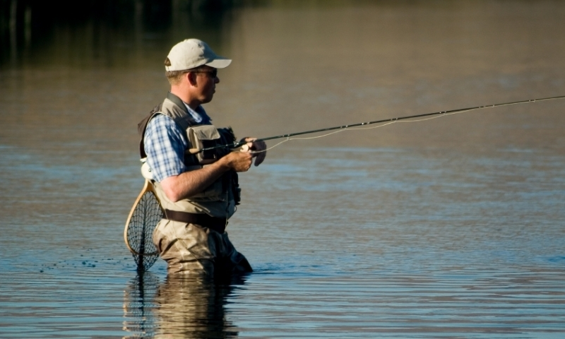 Fly Fishing Silver Creek