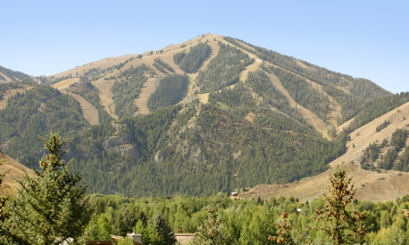 Bald Mountain in the Summer