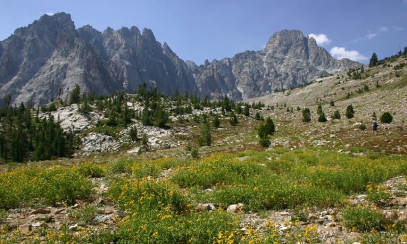 Thompson Peak in the Sawtooth Mountains